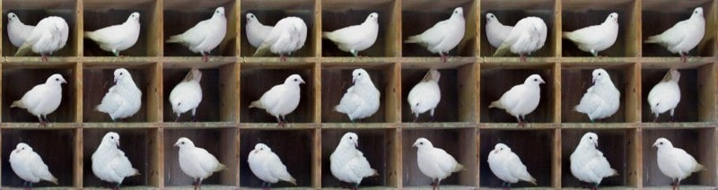 Pigeonhole principle - how it works