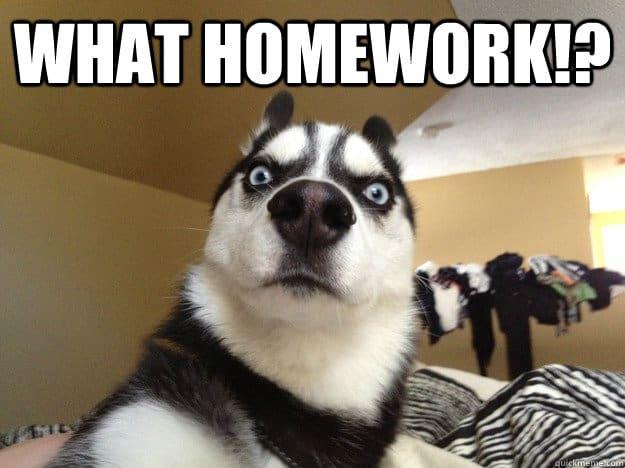 Homework for you